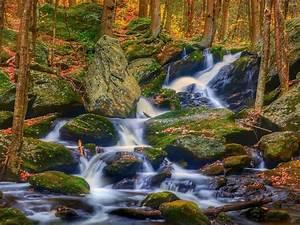Rocks, Landscape, Nature, Autumn, Leaves, Stones, Rocks