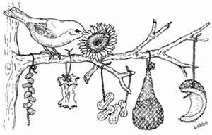 Vögel Im Winter Kindergarten : im winter vogel futterland zzzebra das web magazin f r ~ Whattoseeinmadrid.com Haus und Dekorationen