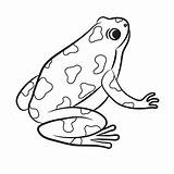 Frog Poison Dart Coloring Cartoon Vector Frogs Drawing Clipart Outline Illustration Amphibian Outlined Drawings Vectors Poisonous Rainforest Royalty Clip Jungle sketch template