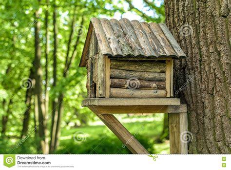 cabane dans un arbre en bois pour des oiseaux photo stock image 77916215