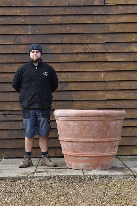 Large Terracotta Planter - Olive Grove Oundle