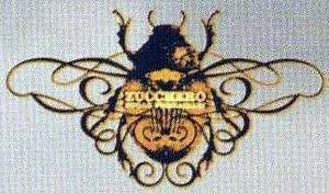 Zucchero - discographie, line-up, biographie, interviews ...