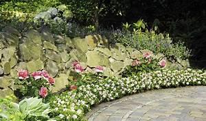 Alternative Zum Buchsbaum : bloombux hecke sommer ~ Frokenaadalensverden.com Haus und Dekorationen