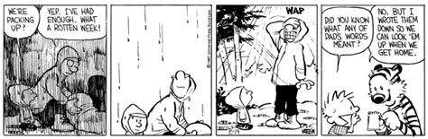 Calvin and Hobbes by Bill Watterson for August 19, 1987 ...
