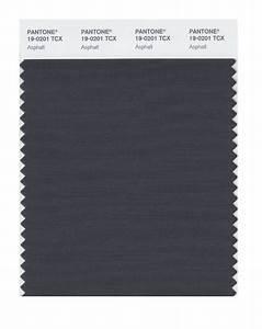 BUY Pantone Smart Swatch 19-0201 Asphalt