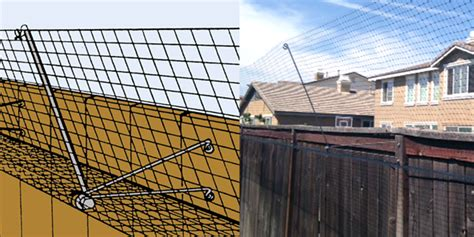 Keep Cats In Backyard by Outdoor Cat Fence Really Works