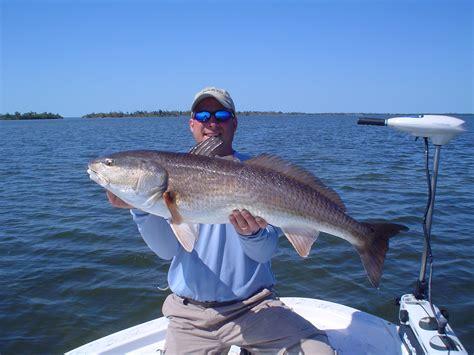 redfish florida fishing captiva southwest tarpon species snook catching