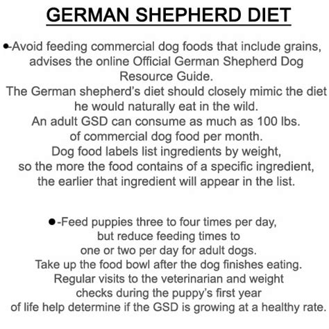 Diet And Useful Summary