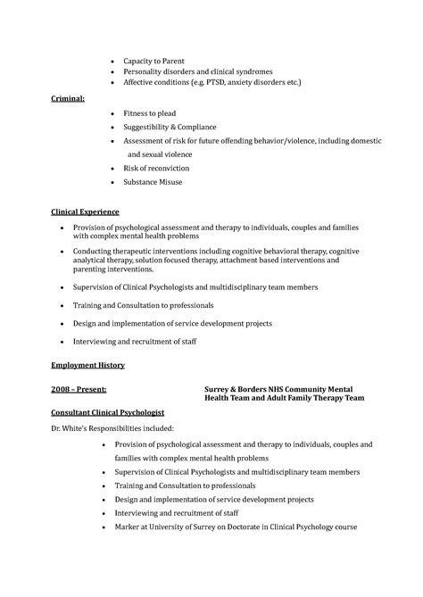 curriculum vitae curriculum vitae template expert witness