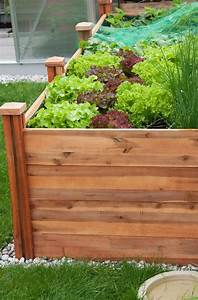 hochbeet bauen hochbeet selber bauen aus holz und metall With katzennetz balkon mit home garden zeitschrift