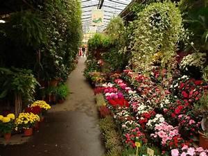 Les Fleurs Paris : march aux fleurs ile de la cit paris le blog de nicolas ~ Voncanada.com Idées de Décoration