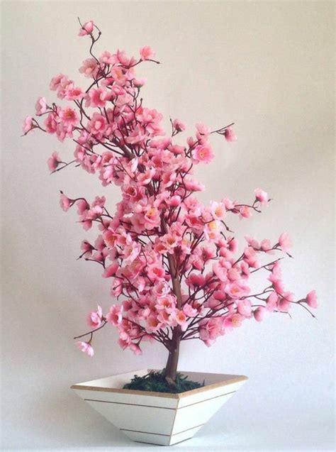 schöne bilder kaufen bonsai baum kaufen und richtig pflegen einige wertvolle