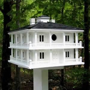 Decorative Large Modern Houses by Decorative Birdhouses Yard Envy