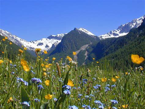 fond ecran chalet montagne fond ecran printemps montagne fonds d 233 cran hd