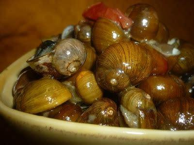 amazonia si鑒e social social food le sagre in salento per mangiare e stare insieme