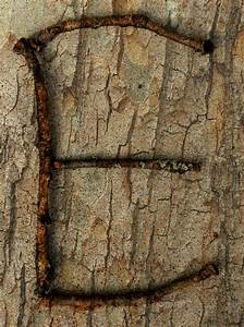 Nature letter e nature letters pinterest for Letters from nature