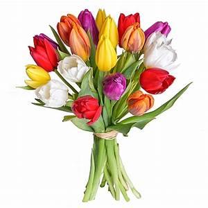 Bilder Von Blumenstrauß : mehr infos zu zwanzig tulpen gemischt ~ Buech-reservation.com Haus und Dekorationen