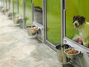 T kennel modular kennel systems love the rotating for Dog kennel systems