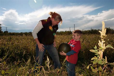 Best Pumpkin Patch Albany Ny by 100 Studts Pumpkin Patch Grand Junction 10 Great