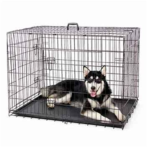 Cani In Gabbia - gabbia per cani trasportino per cani