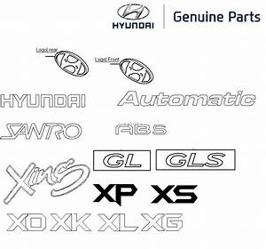 Hyundai Santro Xing  Logos And Monograms