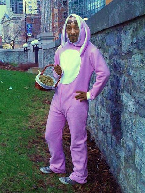 pictures  celebrities dressed  rabbits