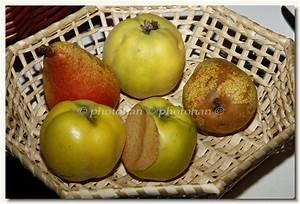 Panier A Fruit : fruits et l gumes ~ Teatrodelosmanantiales.com Idées de Décoration