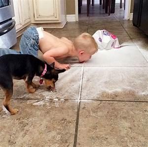 15 barn som fick utegangsforbud for all framtid With dog licking the floor