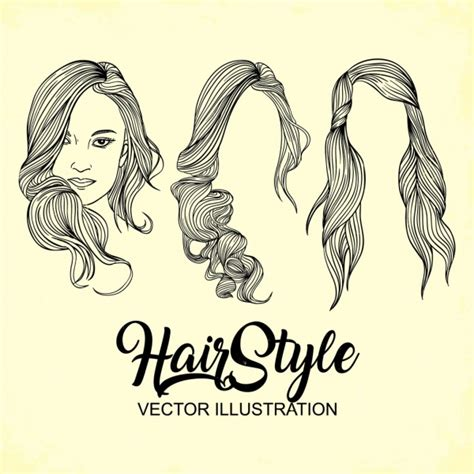 hairstyle  vector    vector