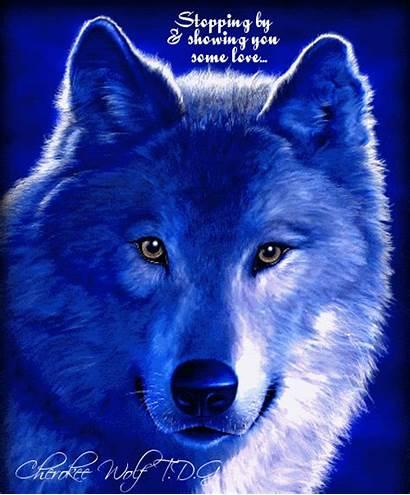 Wolf Spirit Wolves Animals Wiccan Animal Symbols