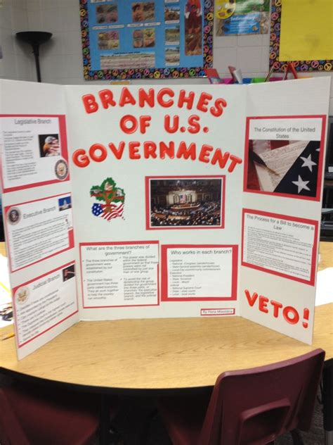 branches  government project  grade