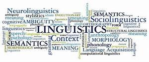 Duke Linguistics Program