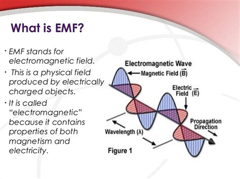 what does bsc stand for the true facts about emf