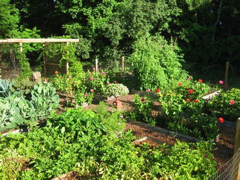 kitchen garden ideas the easy kitchen garden