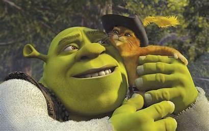 Shrek 2004 Movie Cat