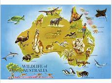 Australia and Marsupials