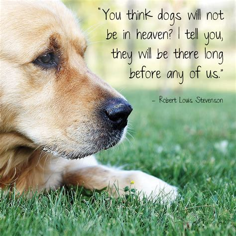 famous quotes  animals quotesgram