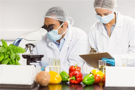 test cuisine multiplying benefits implementing food safety in the agro business sector