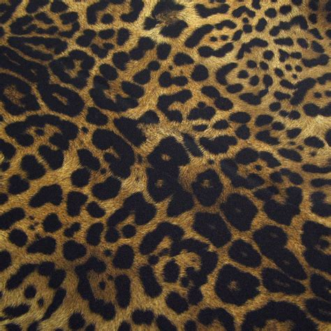 Jaguar Print by Jaguar Animal Print Lasting Impressions Event Rentals