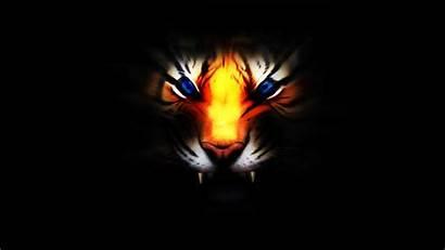 3d Tiger Wallpapers Cool Desktop Animal Warrior