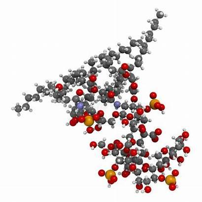 Core Inner Rendering Molecule Lps Lipid Lipopolysaccharide