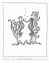 Coloring Pages Seahorse Seaweed Realistic Ocean Seahorses Clipart Sheets Cute Drawing Cartoon Printable Animals Quotes Animal Echo Activities Wonderweirded Wildlife sketch template