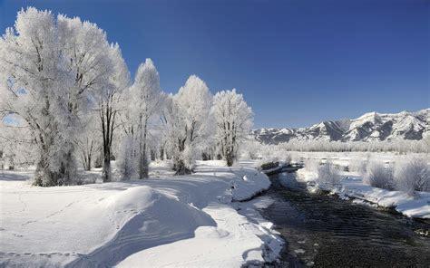 Die 87+ Besten Winter Hintergrundbilder Hd 1920x1080