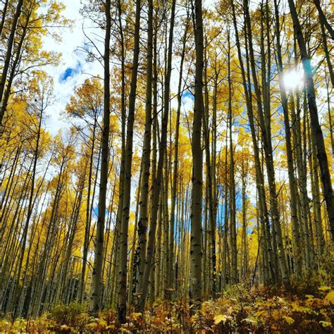 lesser known colorado fall hikes perfect 303magazine heat hiking