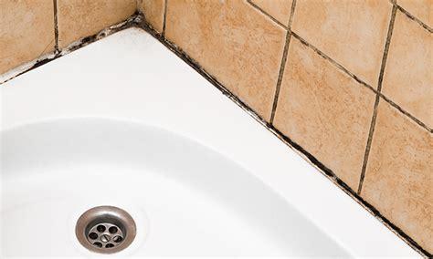 muffa doccia come togliere la muffa dai muri ace