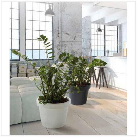 vasi da terrazzo in plastica vasi in plastica venere liscio 83519012 polietilene per