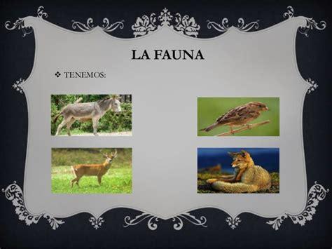 La región quechua