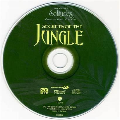 Jungle Secrets Album Solitudes Gibson Dan Release