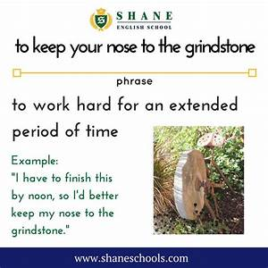 1128 best Idiom of the day images on Pinterest
