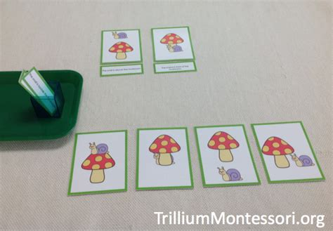 literacy activities for preschoolers literacy activities for preschoolers trillium 125
